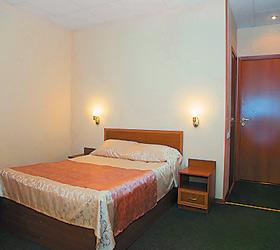 Hotel Alliance Hotel Vidnoe