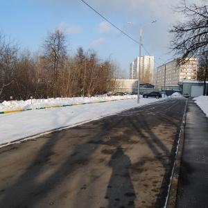 Aminevskaya