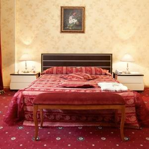 AMAKS Congress-Hotel