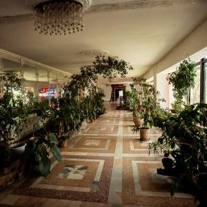 Hotel Lastochka
